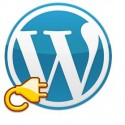 Top 7 WordPress Plugins for Business